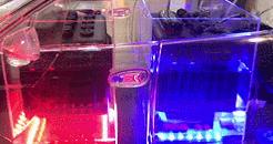 锂电池浸没式冷却降温